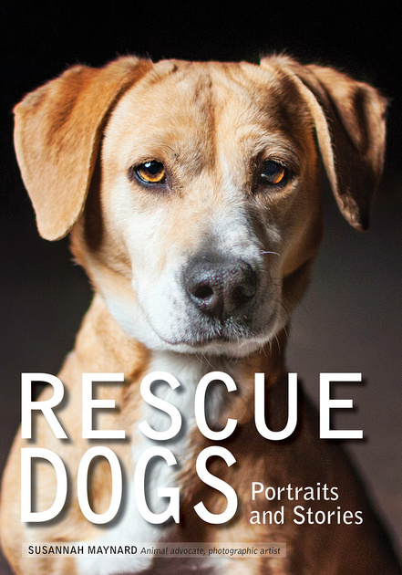 rescue dogs, dog photography book, Amherst Media, Pet Love Photography, dog portraits,